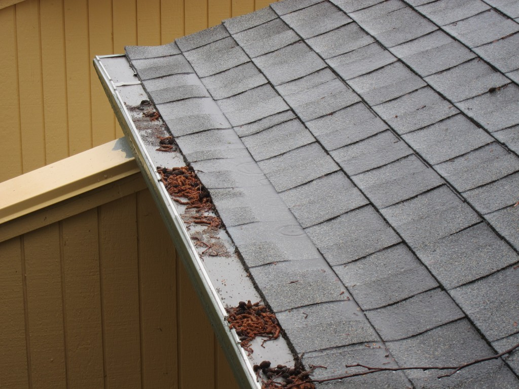 Water Trough on Roof Shingles