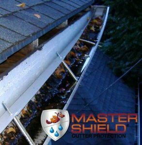 Gutter Cleaning and Repair